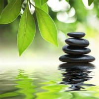 Cultivate the Gift of Mindfulness