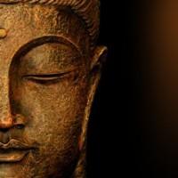 Meditation and Transformation