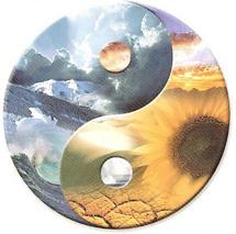 Meditation: Going Beyond Logic