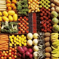 Why Eat Vegetarian?